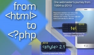 Infographic webmaster