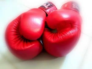 Red Team (muay thai gloves) - red teaming consulting